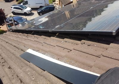 Before solar pigeon guard Cambuslang, Glasgow